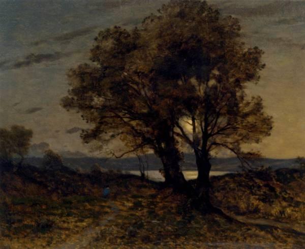 Paysage Au Clair De Lune